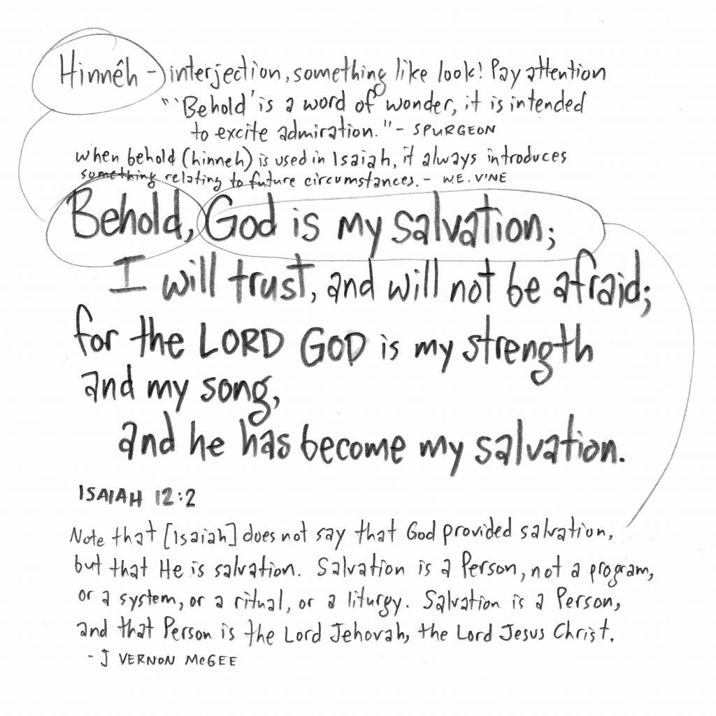 """""""Behold, God is my salvation; I will trust, and will not be afraid; for the LORD GOD is my strength and my song, and he has become my salvation."""" —Isaiah 12:2"""